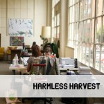 Harmless Harvest_sailthru