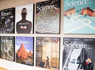 Careers - What Valda Does Deputy Editor, Science