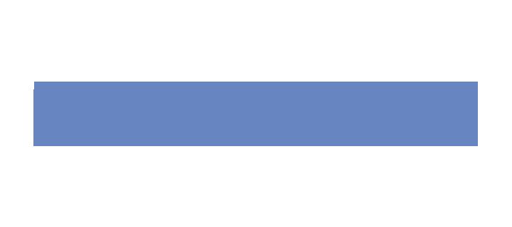 NTT DATA Services Logo