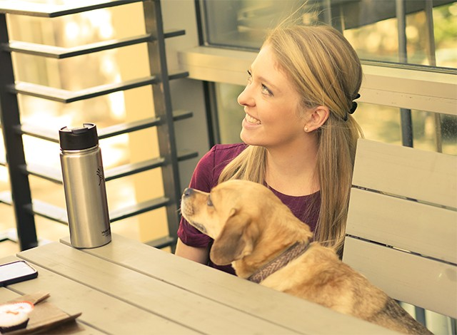 Careers - Sofie's Story Treats & Treatment