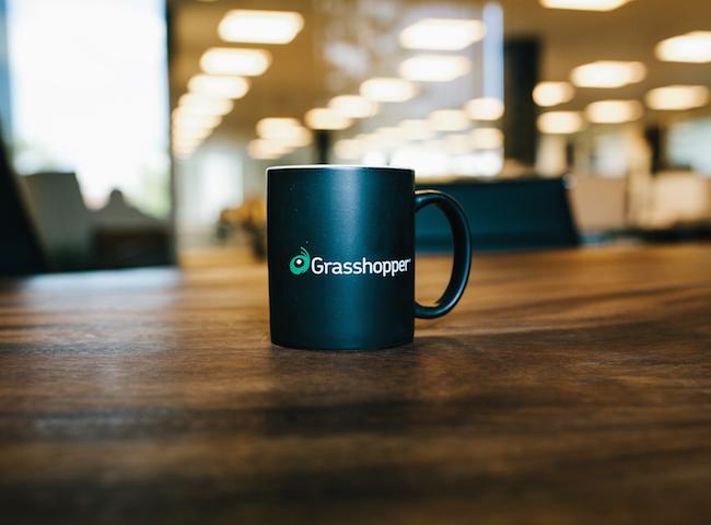 Grasshopper Company Image 1