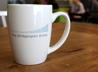 Careers - Bridgespan 101
