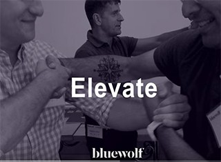 Careers - Check Out Bluewolf's Professional Development Program, Elevate