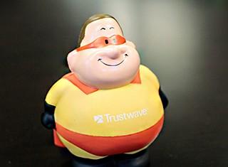 Trustwave Company Image