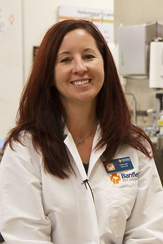 Dawn Love, Veterinarian & Chief Of Staff  - Banfield Pet Hospital Careers