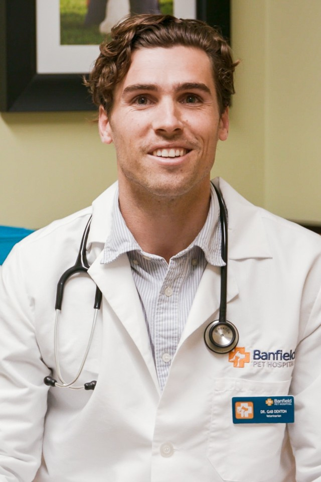 Gabre Denton, Veterinarian - Banfield Pet Hospital Careers