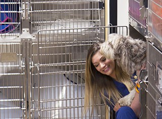 Careers - Heather's Story A Passion For Animals