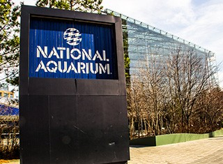 National Aquarium Company Image