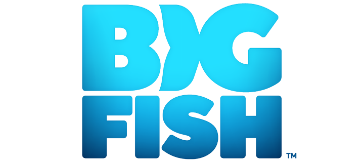 Big Fish Games Careers