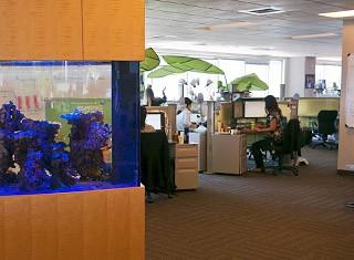 Careers - Office Life  Team Initiation